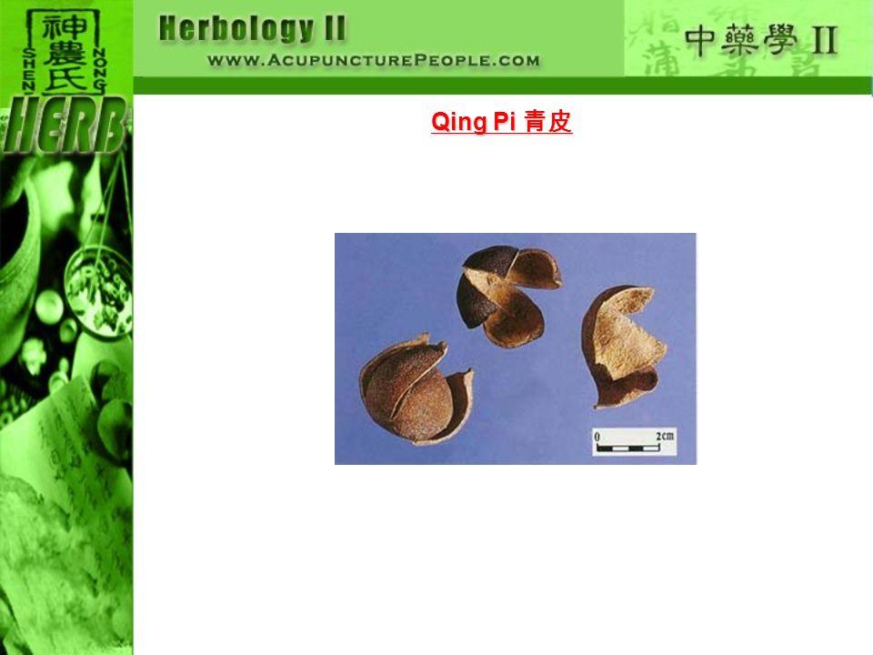 Qing Pi Qing Pi