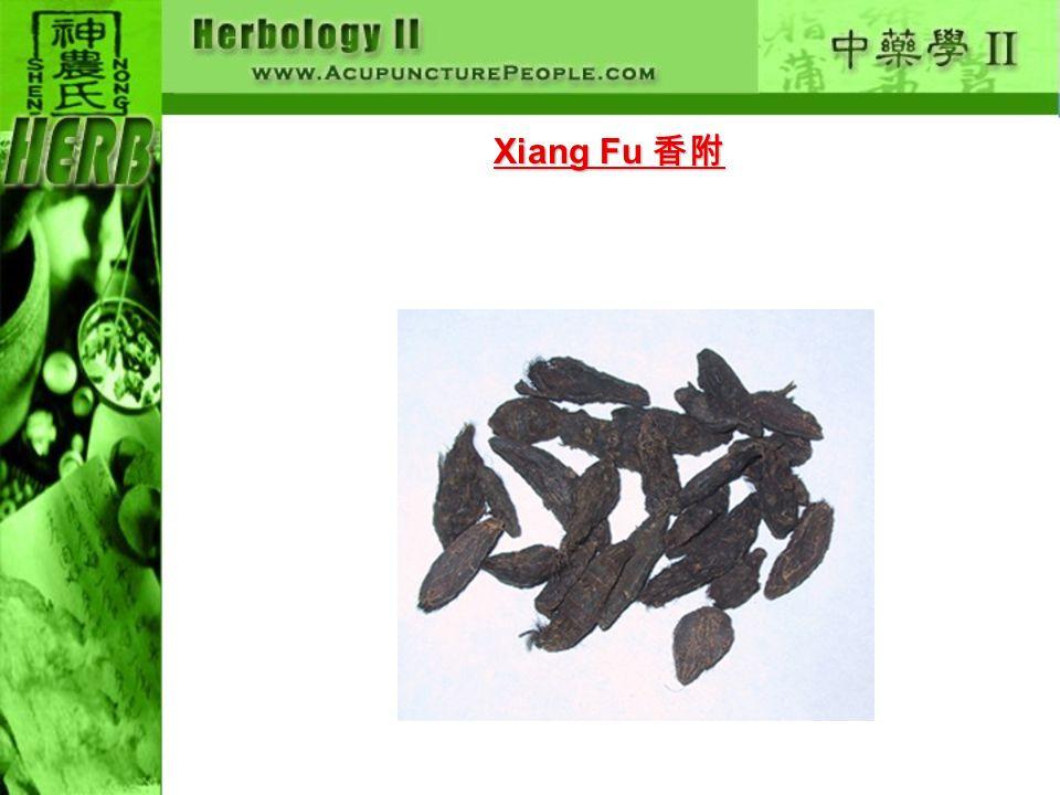 Xiang Fu Xiang Fu