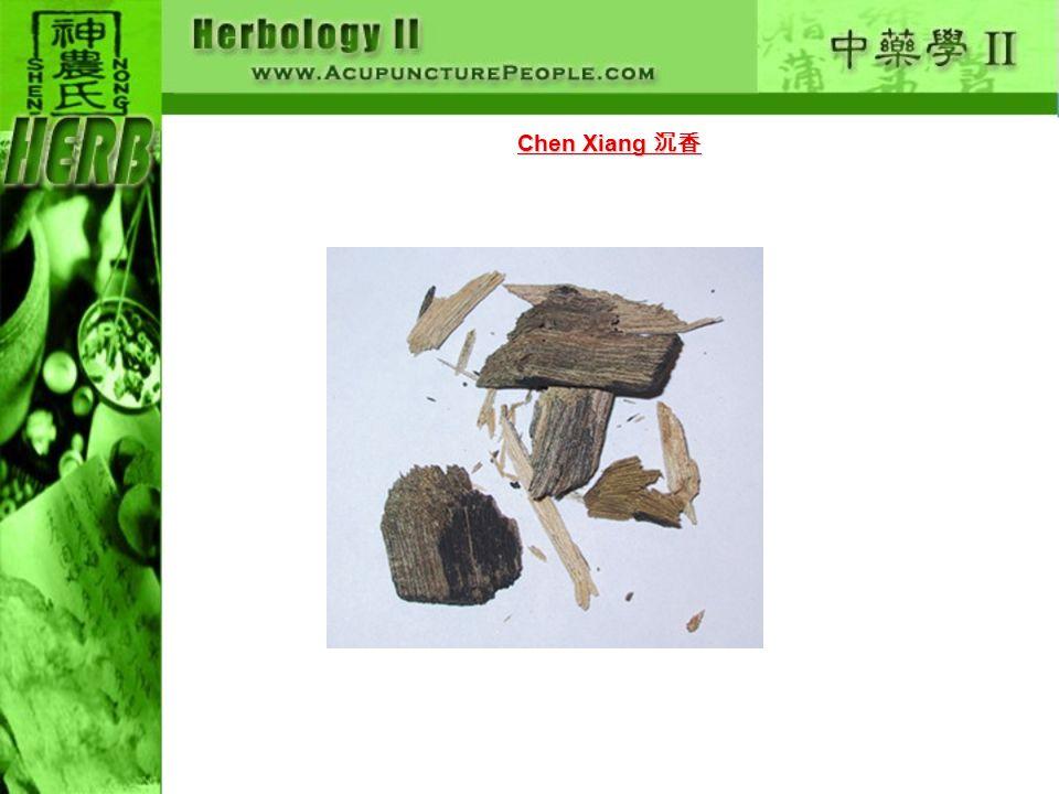 Chen Xiang Chen Xiang