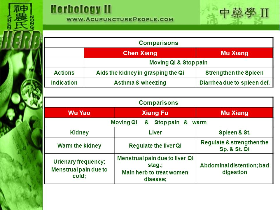 Comparisons Chen XiangMu Xiang Moving Qi & Stop pain ActionsAids the kidney in grasping the QiStrengthen the Spleen IndicationAsthma & wheezingDiarrhea due to spleen def.