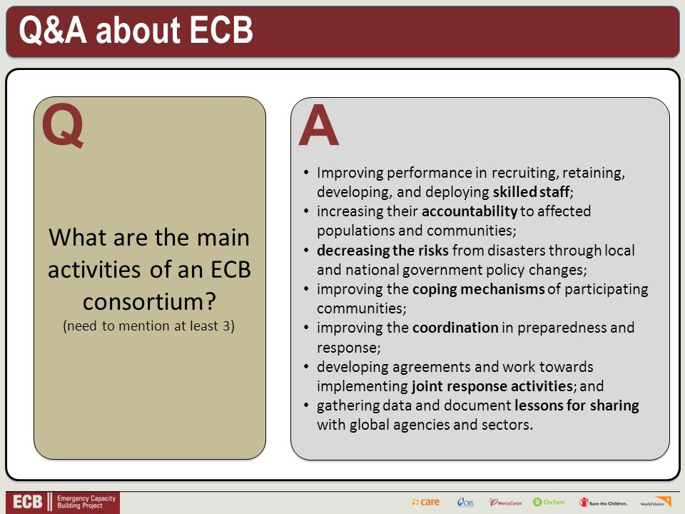 Q&A about ECB . What are the main activities of an ECB consortium.
