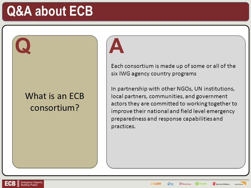 Q&A about ECB . What is an ECB consortium.