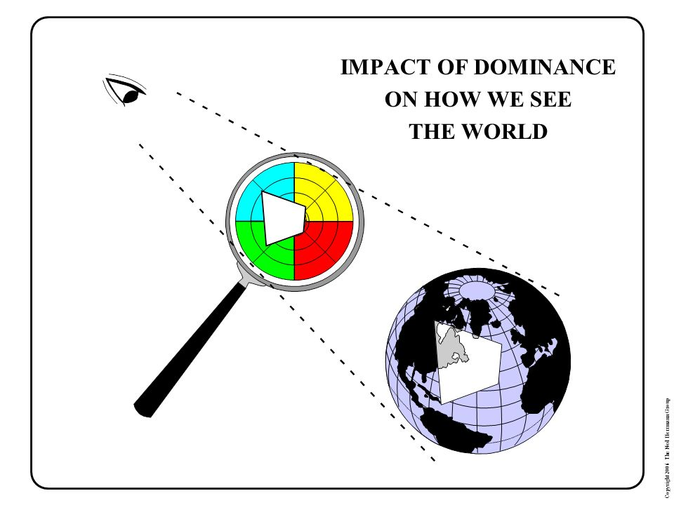 Copyright 2006 The Ned Herrmann Group IMPACT OF DOMINANCE ON HOW WE SEE THE WORLD