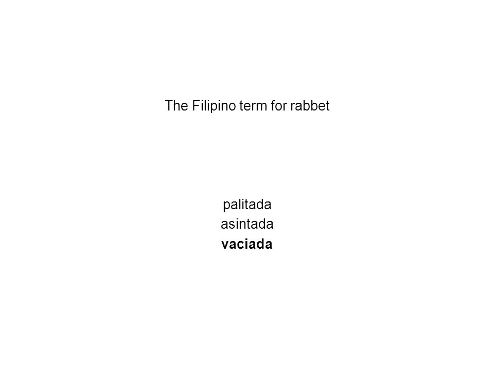 The Filipino term for rabbet palitada asintada vaciada