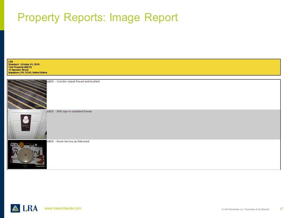 Property Reports: Narrative Report 16