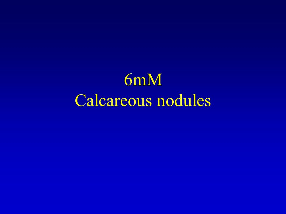 6mM Calcareous nodules