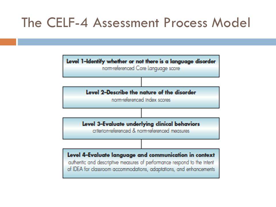 The CELF-4 Assessment Process Model