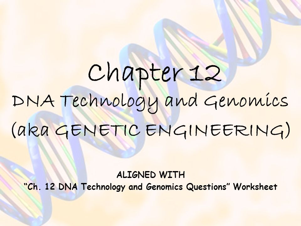 Chapter 12 DNA Technology and Genomics (aka GENETIC ENGINEERING) ALIGNED WITH Ch. 12 DNA Technology and Genomics Questions Worksheet