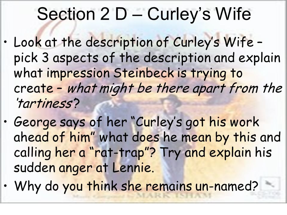 Section 2 D – Curleys Wife Look at the description of Curleys Wife – pick 3 aspects of the description and explain what impression Steinbeck is trying