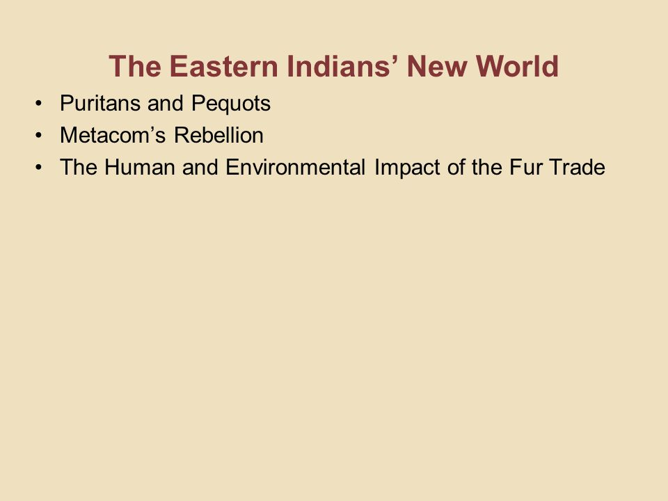 The Eastern Indians New World Puritans and Pequots Metacoms Rebellion The Human and Environmental Impact of the Fur Trade