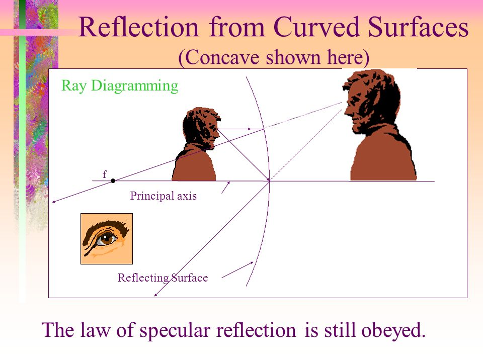 Reflection from Curved Surfaces (Concave shown here) The law of specular reflection is still obeyed. Principal axis Reflecting Surface Ray Diagramming
