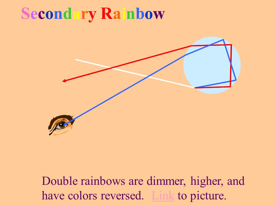Picture - RainbowPicture - Rainbow Individual drops act as dispersers. The 42 o cone Demo– Rainbow ModelDemo – Rainbow Model A single eye can only see