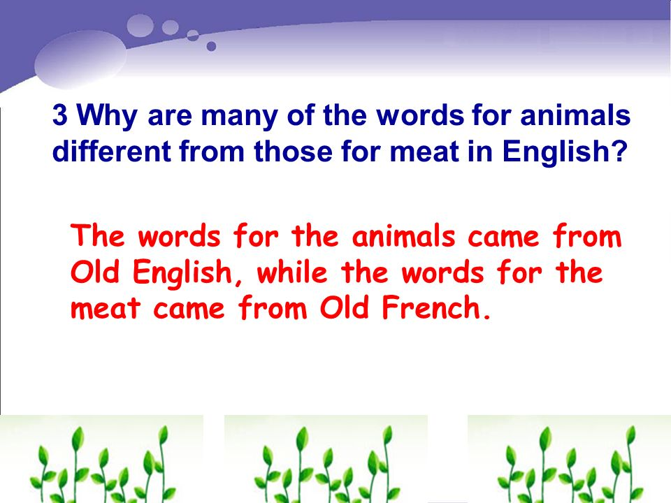 3 Why are many of the words for animals different from those for meat in English? The words for the animals came from Old English, while the words for