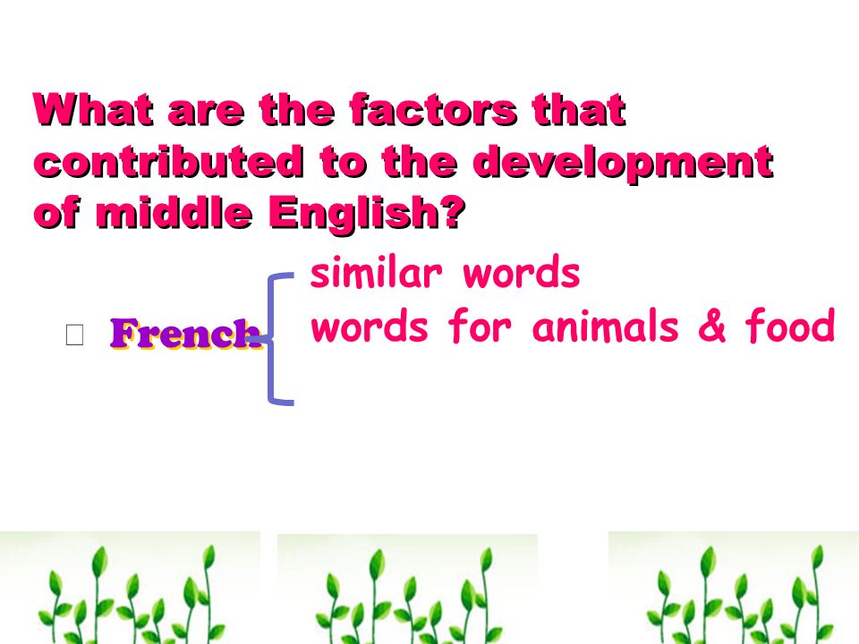 What are the factors that contributed to the development of middle English? French similar words words for animals & food