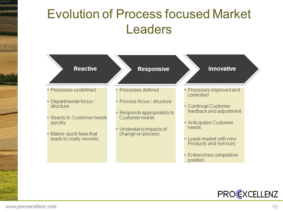 www.procexcellenz.com 10 Evolution of Process focused Market Leaders Reactive Processes undefined Departmental focus / structure Reacts to Customer ne