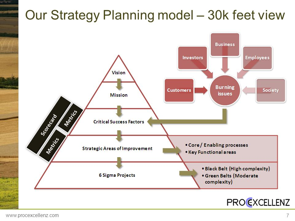 www.procexcellenz.com 7 Our Strategy Planning model – 30k feet view