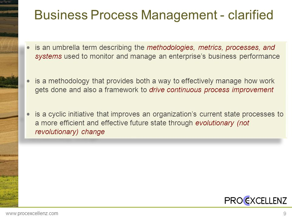 www.procexcellenz.com 9 Business Process Management - clarified is an umbrella term describing the methodologies, metrics, processes, and systems used