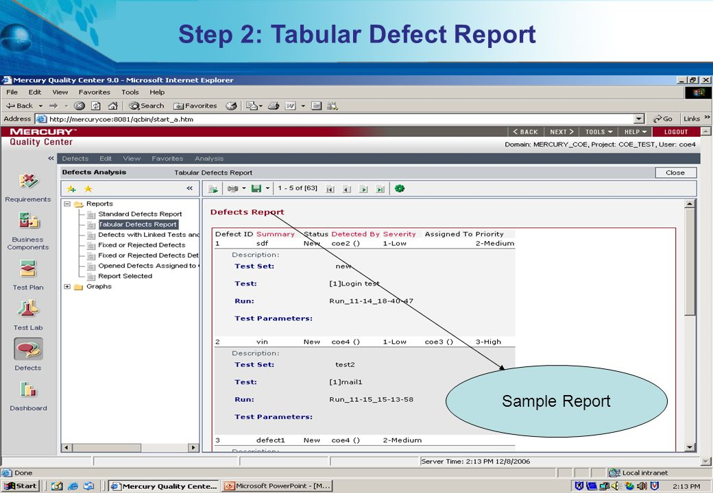 HITS Mercury COE. All rights reserved.Proprietary & Confidential Step 2: Tabular Defect Report Sample Report