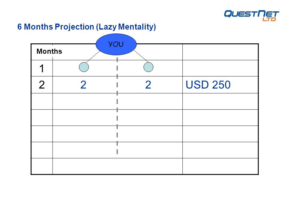 1 2 2 2USD 250 YOU 6 Months Projection (Lazy Mentality) Months