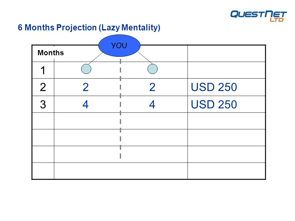 1 2 2 2USD 250 3 4 4USD 250 YOU 6 Months Projection (Lazy Mentality) Months