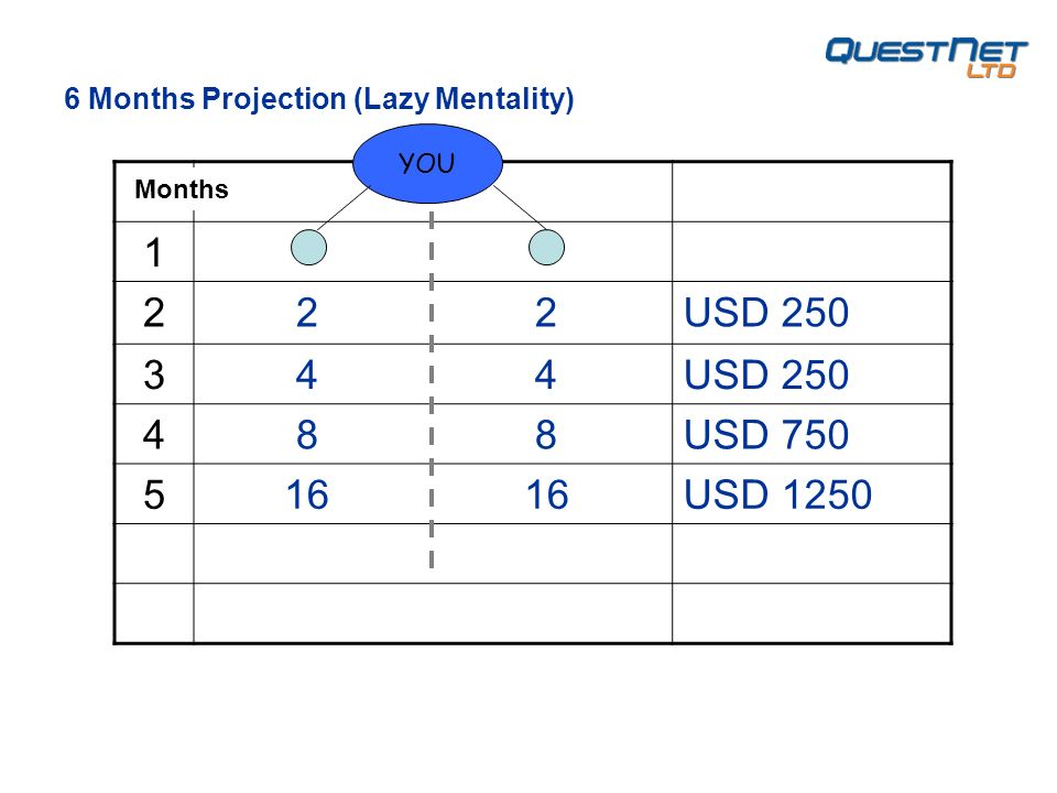 USD USD USD USD 1250 YOU 6 Months Projection (Lazy Mentality) Months