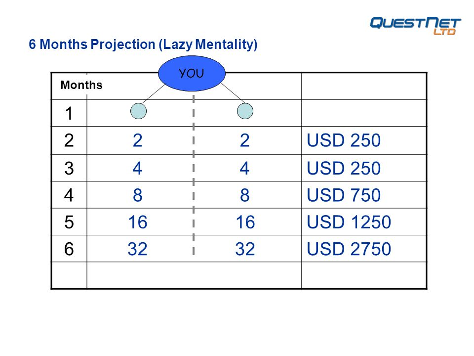USD USD USD USD USD 2750 YOU 6 Months Projection (Lazy Mentality) Months