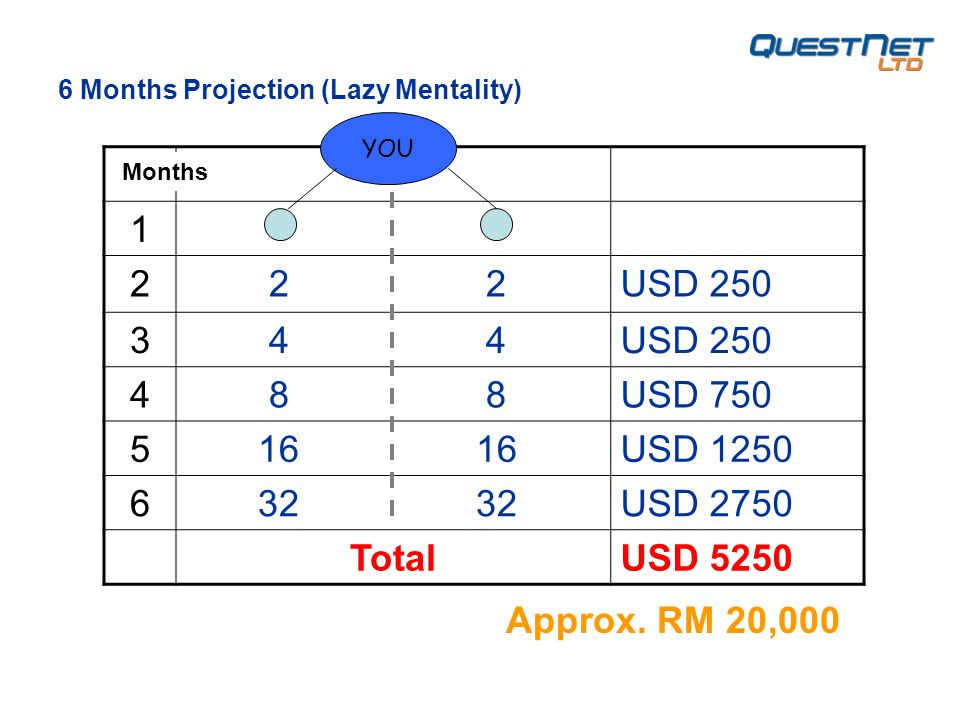 1 2 2 2USD 250 3 4 4USD 250 4 8 8USD 750 5 16 16USD 1250 6 32 32USD 2750 TotalUSD 5250 YOU 6 Months Projection (Lazy Mentality) Months Approx.