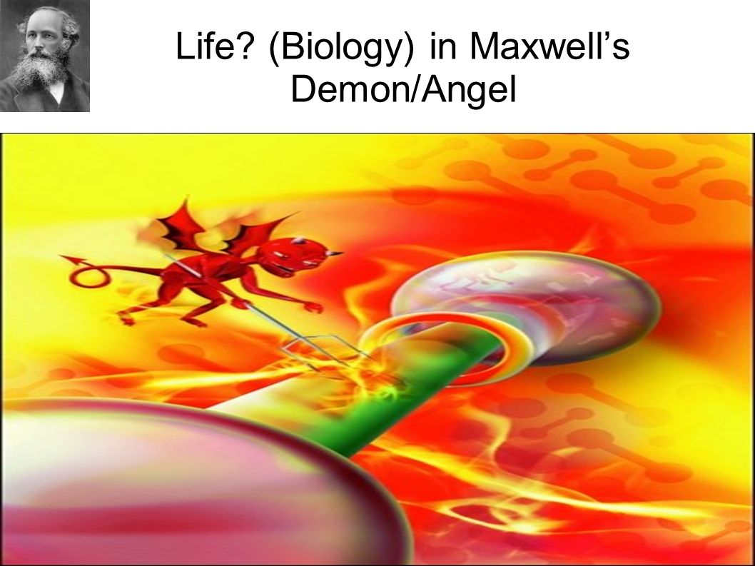 Life? (Biology) in Maxwells Demon/Angel