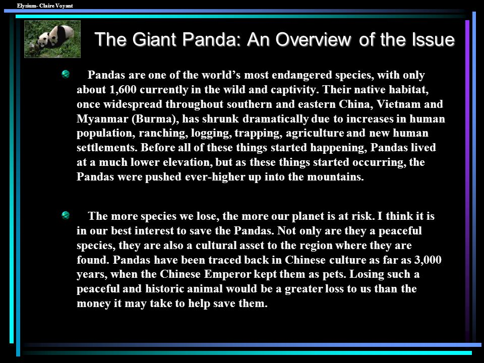 Giant Panda Population between 1976 and 2005 Better or Worse? Dont be Afraid to Sing - Stars