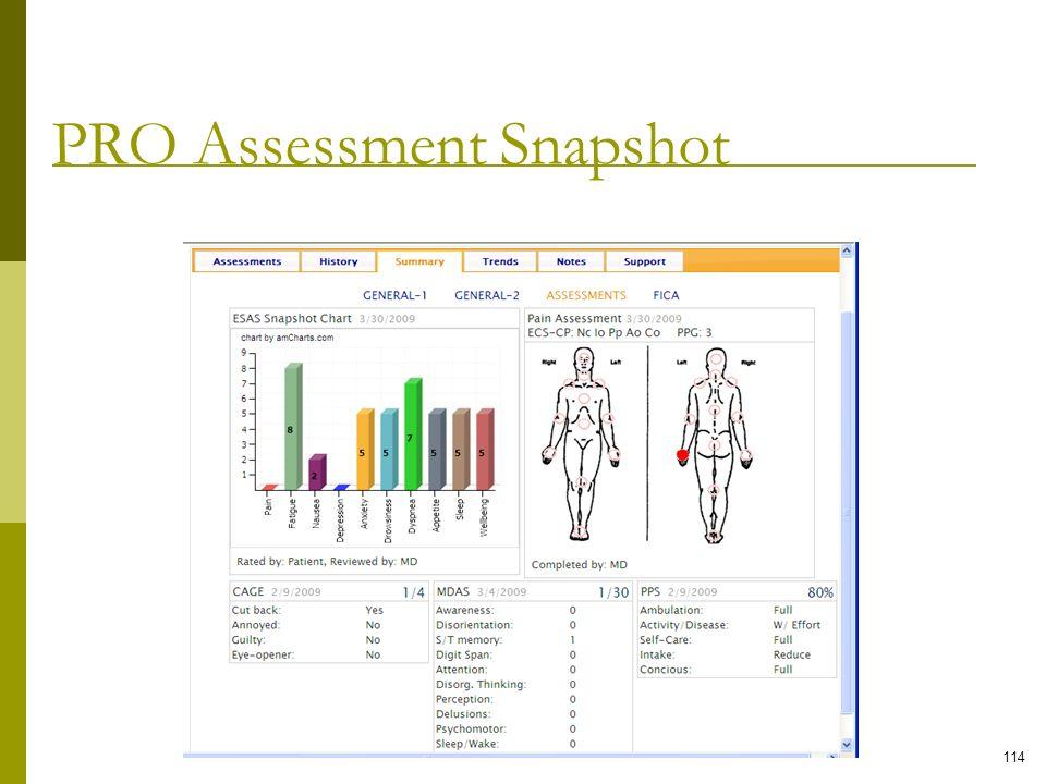 PRO Assessment Snapshot 114