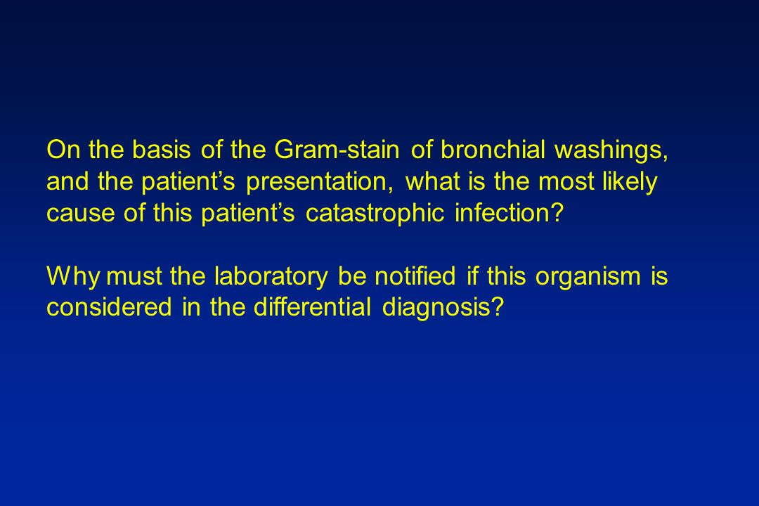 On the basis of the Gram-stain of bronchial washings, and the patients presentation, what is the most likely cause of this patients catastrophic infec