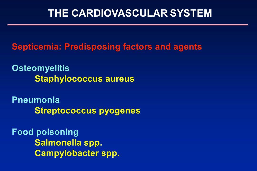 THE CARDIOVASCULAR SYSTEM Septicemia: Predisposing factors and agents Osteomyelitis Staphylococcus aureus Pneumonia Streptococcus pyogenes Food poison