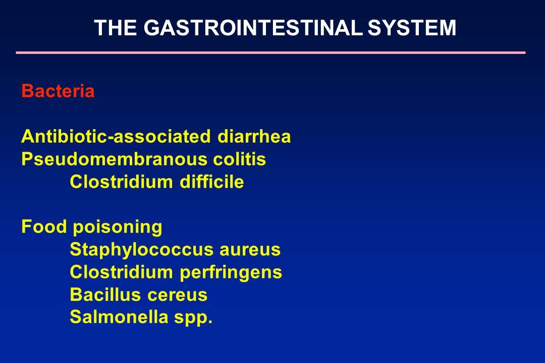 THE GASTROINTESTINAL SYSTEM Bacteria Antibiotic-associated diarrhea Pseudomembranous colitis Clostridium difficile Food poisoning Staphylococcus aureu