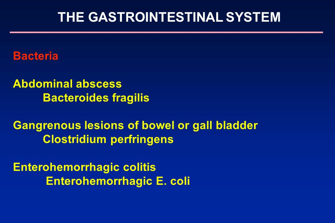 THE GASTROINTESTINAL SYSTEM Bacteria Abdominal abscess Bacteroides fragilis Gangrenous lesions of bowel or gall bladder Clostridium perfringens Entero