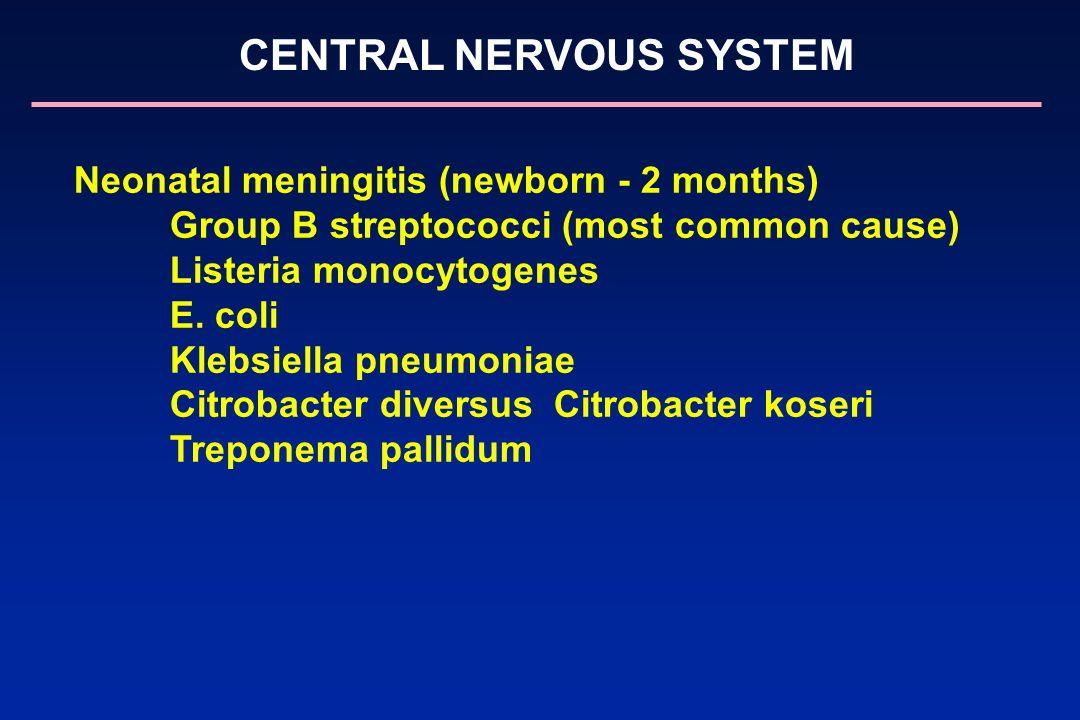 CENTRAL NERVOUS SYSTEM Neonatal meningitis (newborn - 2 months) Group B streptococci (most common cause) Listeria monocytogenes E. coli Klebsiella pne