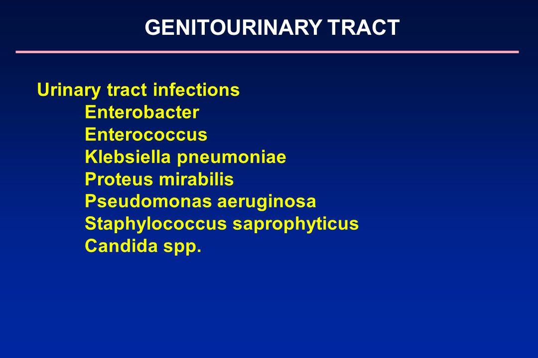 GENITOURINARY TRACT Urinary tract infections Enterobacter Enterococcus Klebsiella pneumoniae Proteus mirabilis Pseudomonas aeruginosa Staphylococcus s