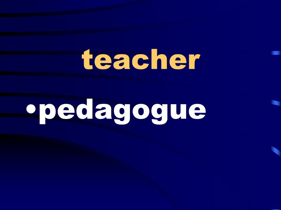 teacher pedagogue