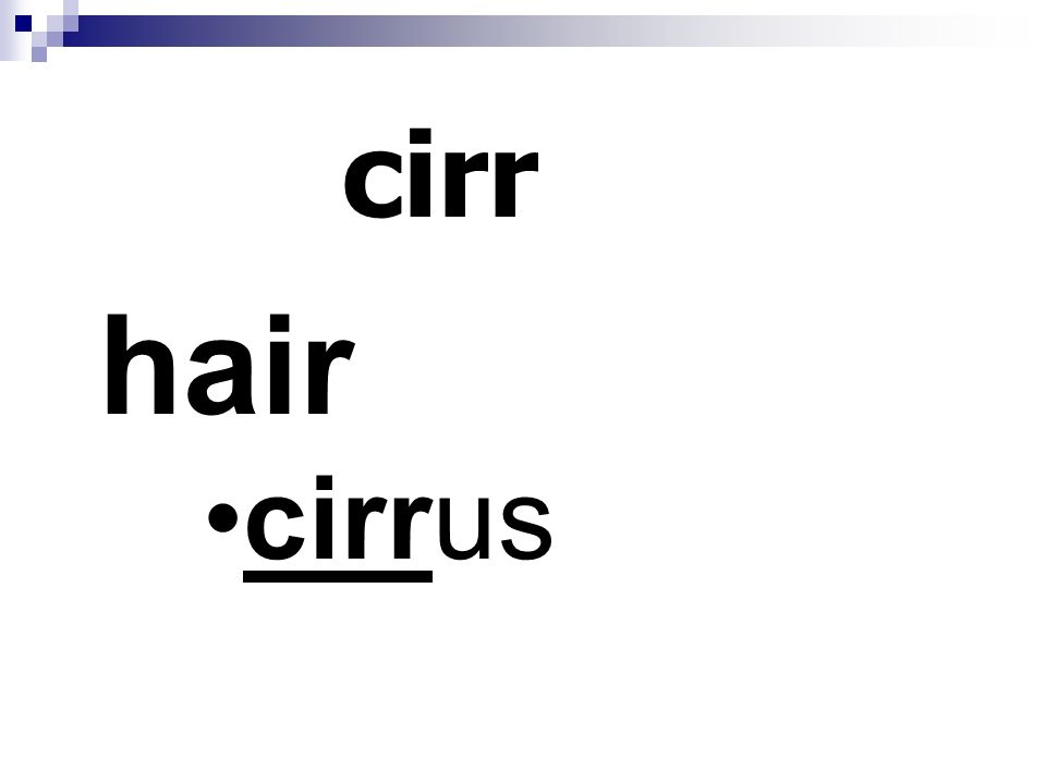 cirr hair cirrus