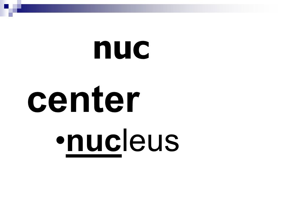 nuc center nucleus