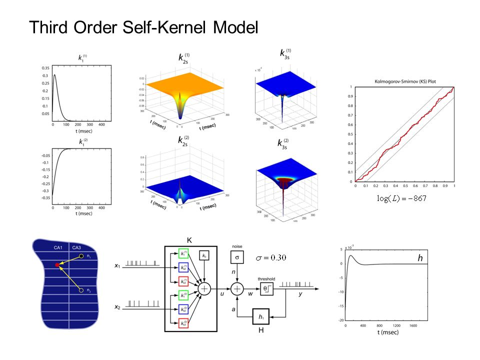 Third Order Self-Kernel Model