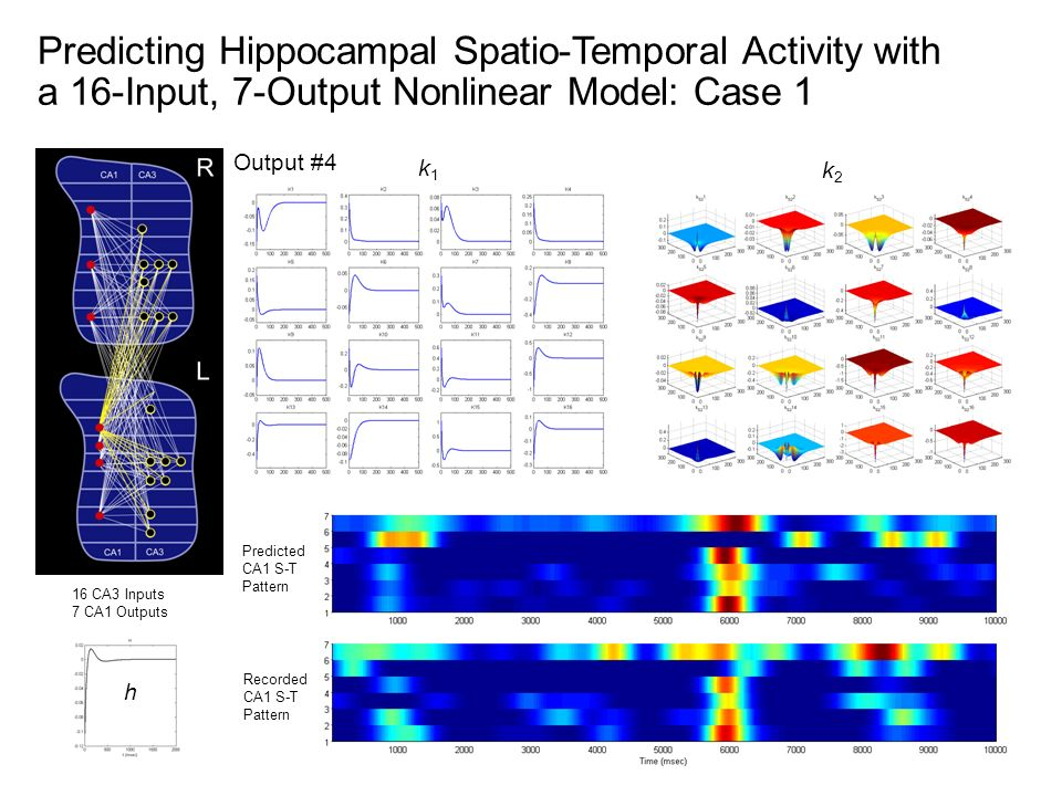 16 CA3 Inputs 7 CA1 Outputs k1k1 k2k2 h Recorded CA1 S-T Pattern Predicted CA1 S-T Pattern Output #4 Predicting Hippocampal Spatio-Temporal Activity w