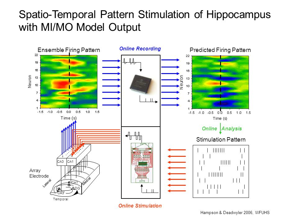 Spatio-Temporal Pattern Stimulation of Hippocampus with MI/MO Model Output Temporal CA1 8 9 1 16 CA1 CA3 DG CA3 Medial Lateral Array Electrode Ensembl