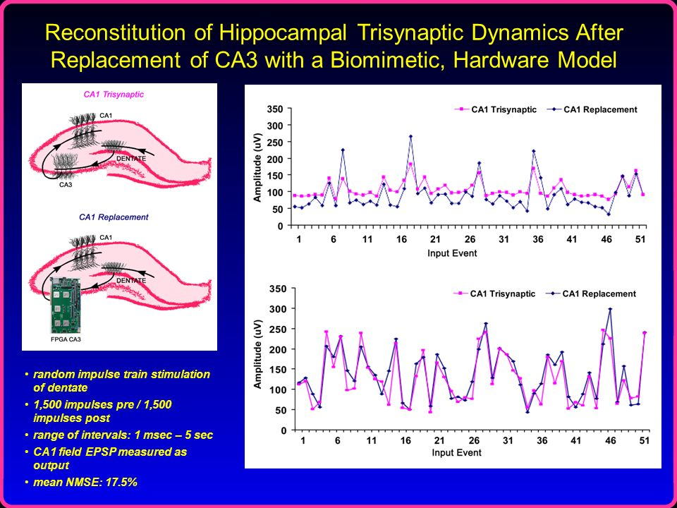 Reconstitution of Hippocampal Trisynaptic Dynamics After Replacement of CA3 with a Biomimetic, Hardware Model random impulse train stimulation of dent