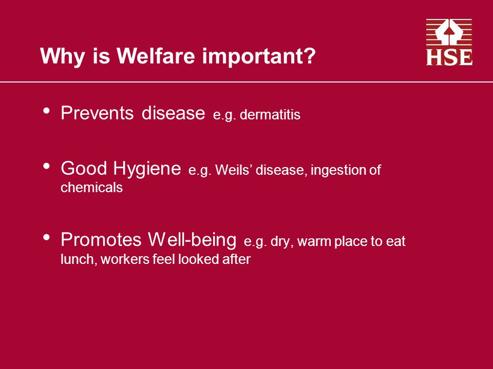Welfare facilities What is required to comply with the law?