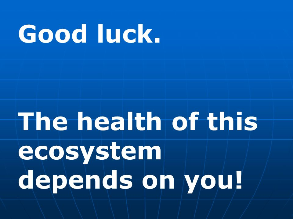Good luck. The health of this ecosystem depends on you!
