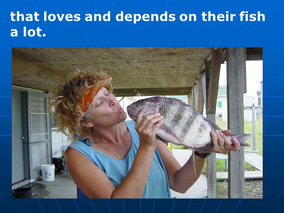 that loves and depends on their fish a lot.