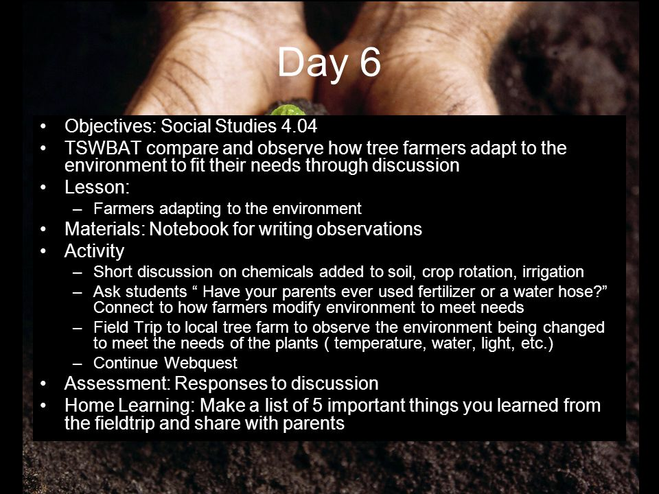 Day 6 Objectives: Social Studies 4.04 TSWBAT compare and observe how tree farmers adapt to the environment to fit their needs through discussion Lesso