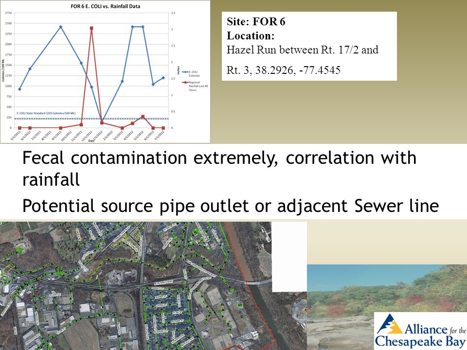 Site: FOR 6 Location: Hazel Run between Rt. 17/2 and Rt. 3, 38.2926, -77.4545 Fecal contamination extremely, correlation with rainfall Potential sourc