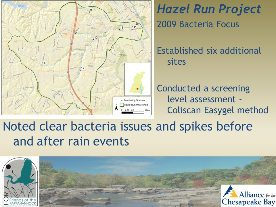 Hazel Run Project 2009 Bacteria Focus Established six additional sites Conducted a screening level assessment - Coliscan Easygel method Noted clear ba