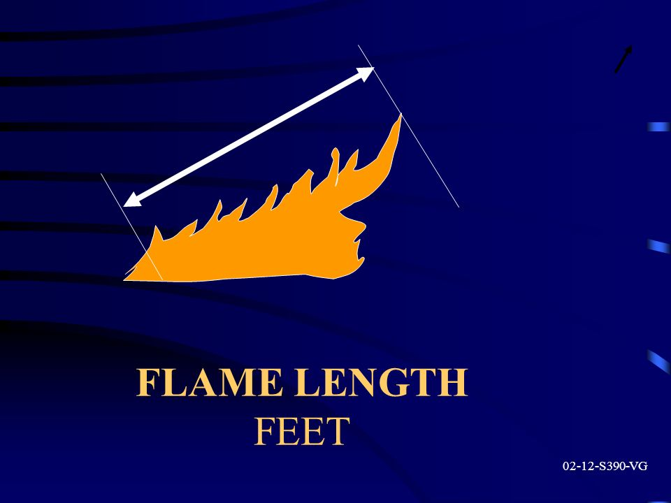 FLAME LENGTH FEET 02-12-S390-VG